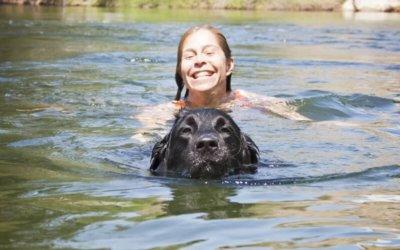 Op vakantie zonder je hond(en)? Natuurlijk niet!