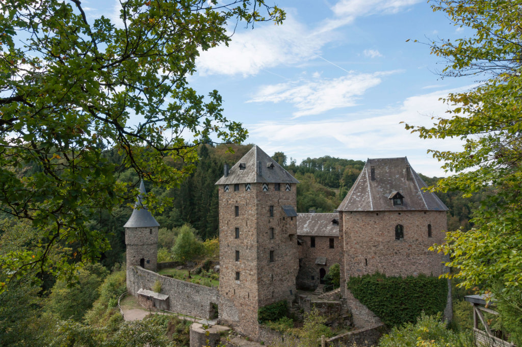 Het kasteel Reinhardtstein
